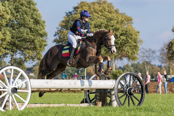 L Ponies Diepenheim 2017