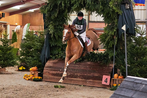 L Horses Indoor Twente 2018