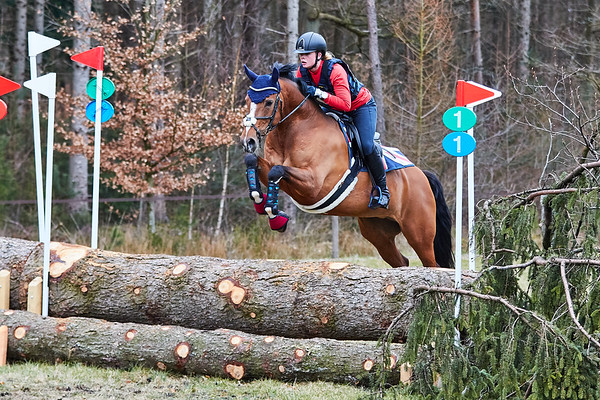L Horses Maarsbergen 2018