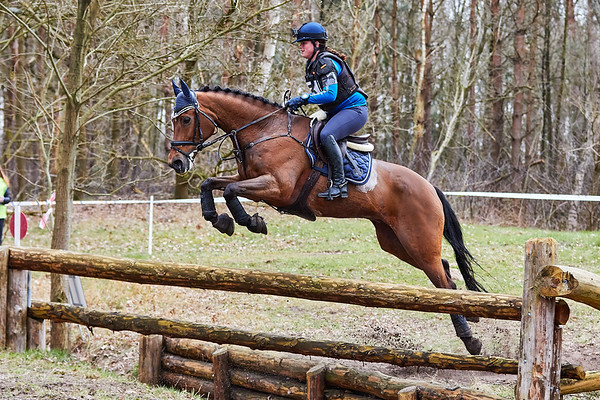 L Horses Alphen-Chaam 2018