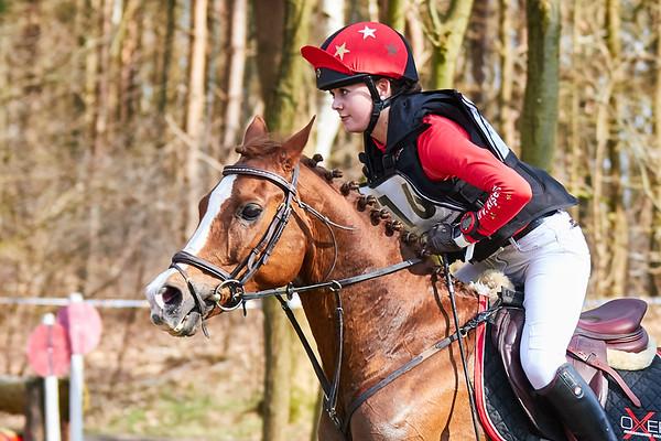 Z Ponies Alphen-Chaam 2018