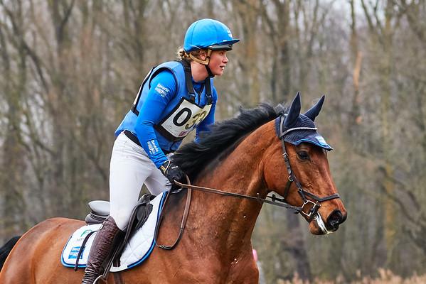 B Horses Amsterdamse Bos 2018