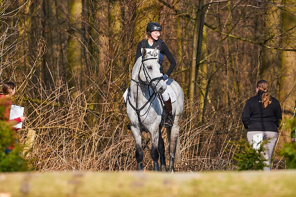 L Horses Amsterdamse Bos