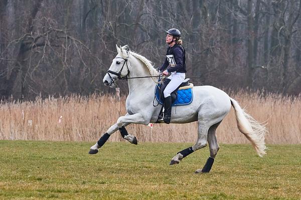 BB Horses Amsterdamse Bos 2018
