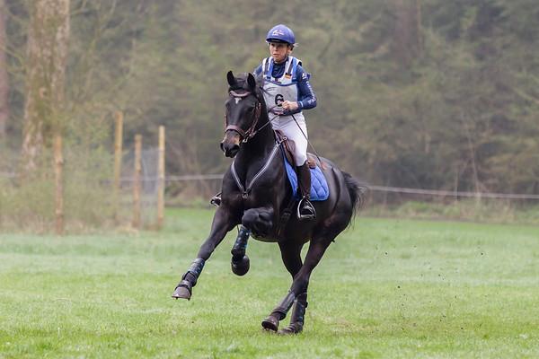 B Horses Maarsbergen 2018