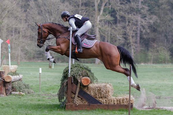 M Horses Maarsbergen 2018