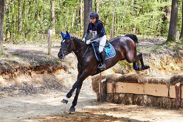 B Horses Markelo 2018