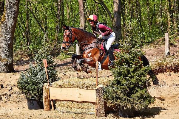L Horses Markelo 2018