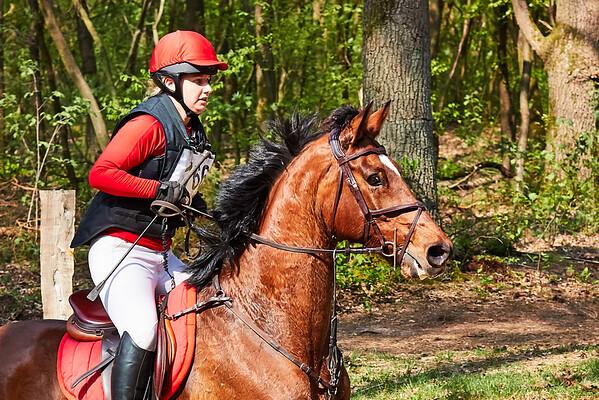 M Horses Markelo 2018