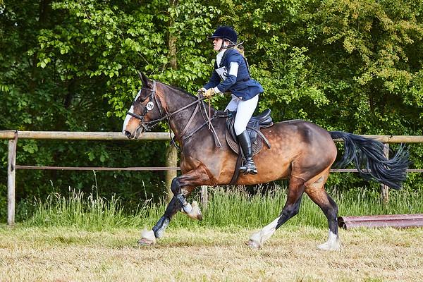 BB Horses Winterswijk 2018