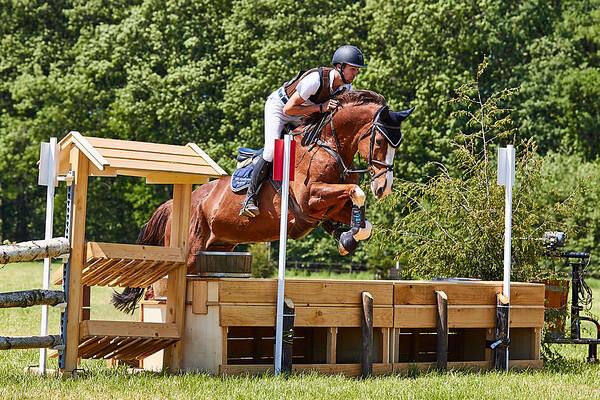 B Horses Winterswijk 2018