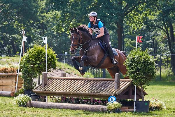 B Horses Grandorse 2018