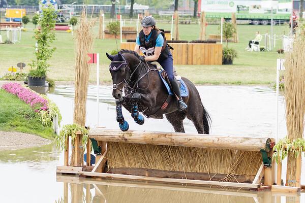 L Horses Grandorse 2018