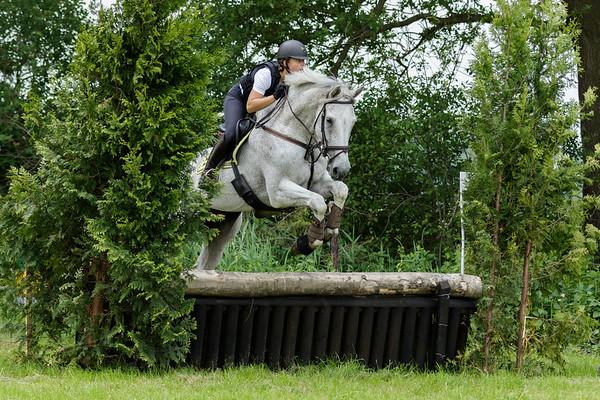 B Horses Vinkega 2018
