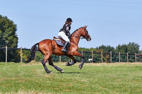 B Horses Arensgenhout 2018