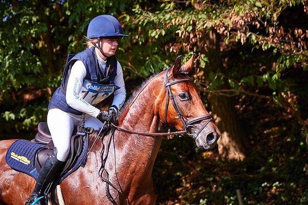 L Horses Arensgenhout 2018