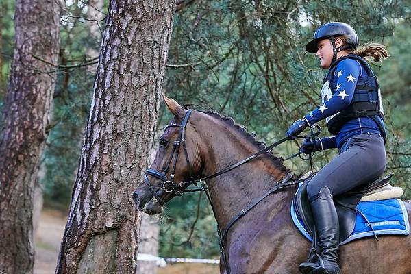 B Horses Norg 2018