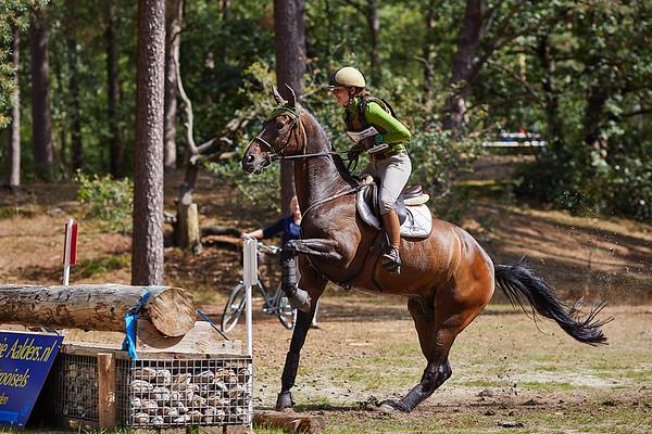 L Horses Norg 2018