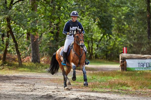 L Ponies Norg 2018