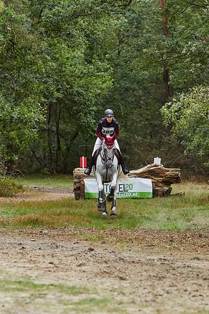 M Horses Norg 2018