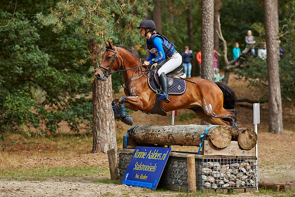 Z Ponies Norg 2018