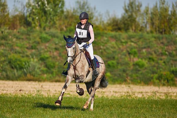 B Horses Westdorpe 2018