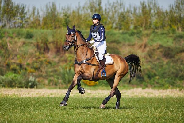 BB Horses Westdorpe 2018