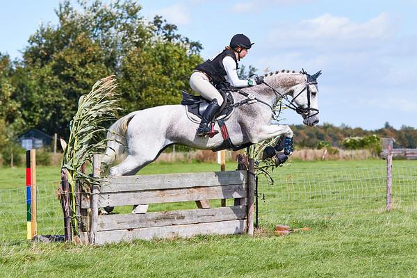 L Horses Texel 2018