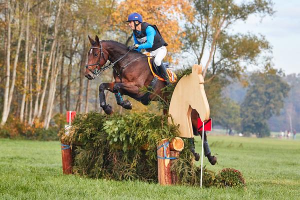 M Horses Diepenheim 2018