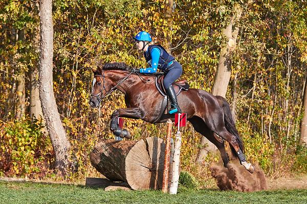 B Horses Diepenheim 2018