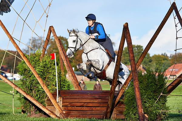 L Horses Barchem 2018