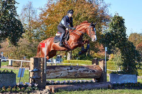 B Horses Barchem 2018