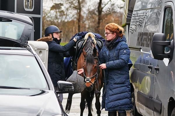 L Ponies Indoor Twente 2019