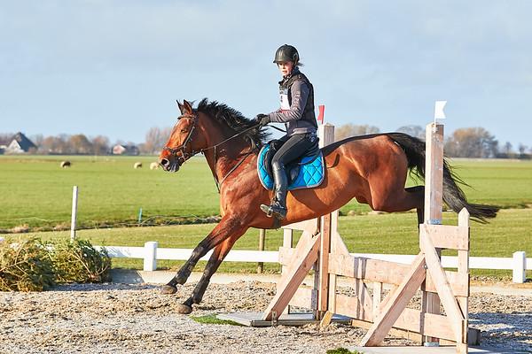 BB Horses Middenbeemster 2019