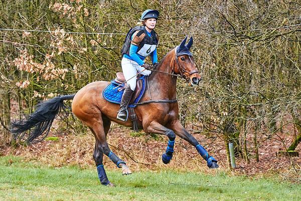 L Horses Alphen-Chaam 2019