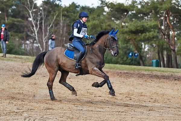 M Horses Alphen-Chaam 2019