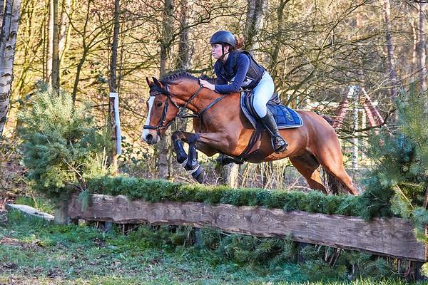 B Ponies Alphen-Chaam 2019