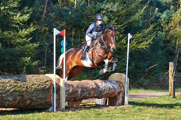 B Horses Maarsbergen 2019