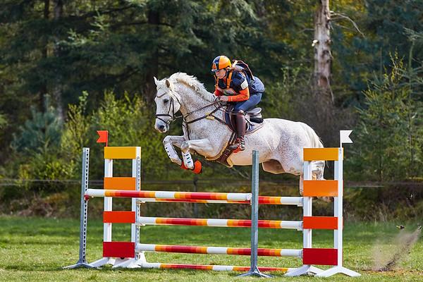 M Horses Maarsbergen 2019