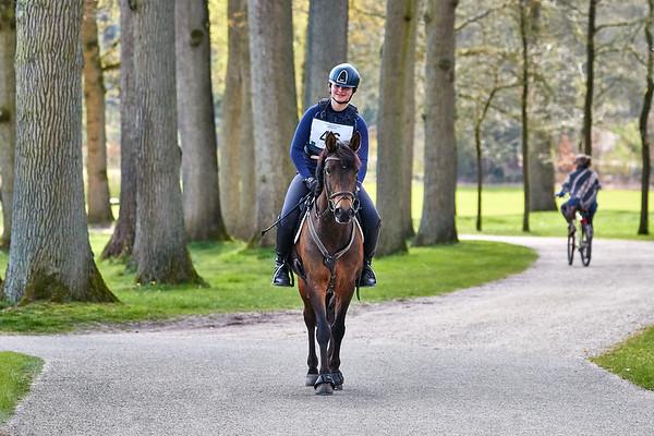 M Ponies Maarsbergen 2019