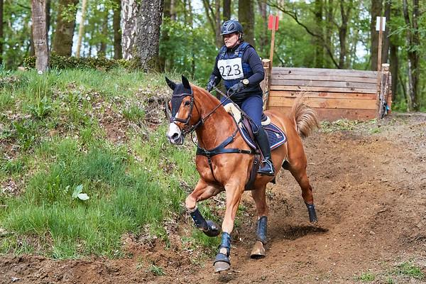 L Horses Markelo 2019