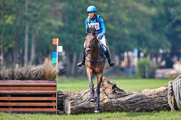 B Horses Tilburg 2019