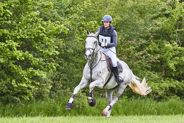 B Horses Vinkega 2019