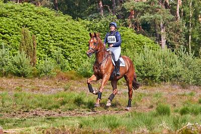 Willemyn Stehouwer (NED)