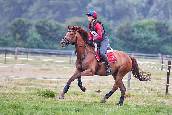 L Horses Vrouwenpolder 2019