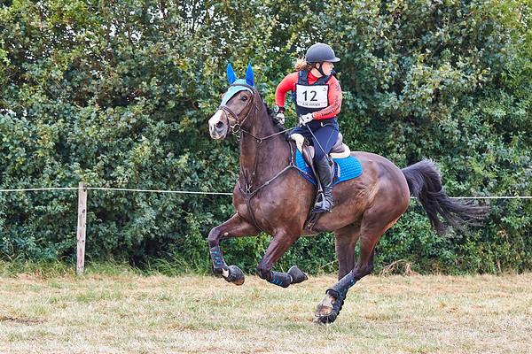 M Horses Vrouwenpolder 2019