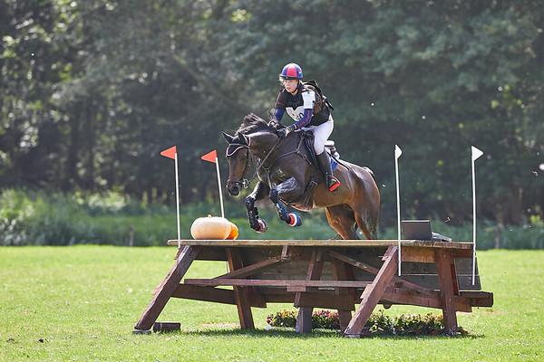 M Horses Geestmerambacht 2019