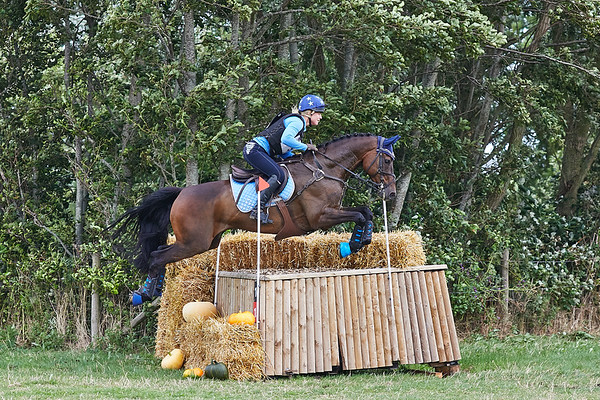 Z Horses Geestmerambacht 2019