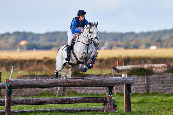 Z Horses Texel 2019