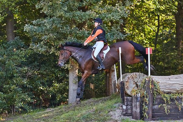 B Horses Gorssel 2019